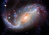 Astronomie, Entfernt, Farbe, Galaxie, Horizontal, M101, Niemand, Schmuckkörbchen, Spiralgalaxie, Stern, Universum, Weltraum, Wissenschaft, S98-898244, AGEFOTOSTOCK