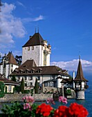 architecture, castle, Lake Thun, oberhofen, picture. Architecture, Castle, Holiday, Lake thun, Landmark, Oberhofen, Picturesque, Quaint, Switzerland, Europe, Thun, Tourism, Travel