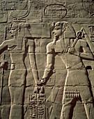 ancient, carve, carving, Egypt, hieroglyphics, hist. Ancient, Carve, Carving, Egypt, Africa, Hieroglyphics, Historical, History, Holiday, Karnak, Landmark, Luxor, Monument, Pharaoh