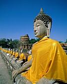 Asia, Ayutthaya, mongkol, religion, Statue, temple, . Asia, Ayutthaya, Chai, Holiday, Landmark, Mongkol, Religion, Statue, Temple, Thailand, Tourism, Travel, Vacation, Wat, Yai