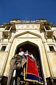 Amber Fort, Asia, Asian, elephants, India, Jaipur, . Amber fort, Asia, Asian, Elephants, Holiday, India, Asia, Jaipur, Landmark, Man, Palace, People, Tourism, Travel, Vacation, Worl