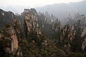 Hunan, Zhangjiajie National Forest Park, Zhangjiajie, Beauty in Nature, Mt Tianzi, Mount Tianzi