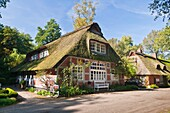 Traditional farmhouse in the picturesque village of Worpswede, Lower Saxony, Germany, Europe
