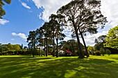 The vast gardens of Muckross House, County Kerry, Ireland, Europe