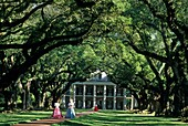Oak Alley Plantation, Vacherie, Louisiana, United States of America, Americas