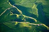 Farmlands Aerial view of Bureba region Burgos Castile Leon Spain The Way of Saint James