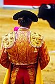 Bullfight at the Plaza de Toros, Granada, Andalusia, Spain, Europe