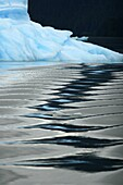 Waves reflected in the calm water of an Iceberg calved from the LeConte Glacier just outside Petersburg, Southeast Alaska, USA  Pacific Ocean