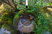 A detailed view shows the traditional stone water basin outside the Seiren-tei teahouse at Tojiin Temple, located in the northern part of Kyoto, Japan.
