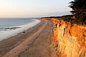 France, 56, Pénestin, beach of the Gold Mine on the edge of the Atlantic Ocean, ocher cliffs, protected site
