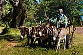 Africa, Zimbabwe, North Matabeleland province, Chisuma Primary School, P. Ncube going home