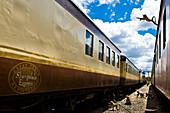 Africa, Zimbabwe, North Matabeleland province, Victoria Falls city, train station, baboons