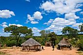 Africa, Zimbabwe, North Matabeleland province, the Ndebele village Mabale
