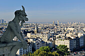 France, Ile-de-France, Capital, Paris, 4th, City center, plunging View(Sight) (seen since Notre-Dame)