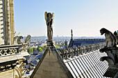 France, Ile-de-France, Capital, Paris, 4th, City center, Notre-Dame, Tour(Tower, Ballot)