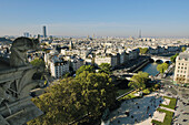 France, Ile-de-France, Capital, Paris, 5th, City center, plunging View(Sight) (seen since Notre-Dame)