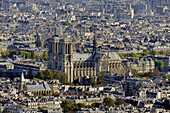 France, Ile-de-France, Capital, Paris, 6th, City center, plunging View(Sight), Notre-Dame