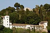The Alhambra - Generalife . Granada. Spain.