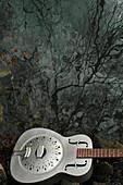 metal resophonic guitar, Mississippi Flood