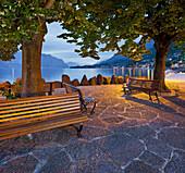 Benches under trees along the banks of Lake Garda, Cassone, Malcesine, Veneto, Italy