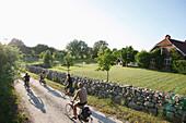 Family bicycling, Klein Thurow, Roggendorf, Mecklenburg-Western Pomerania, Germany