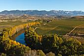 Rio Ebro, Ebro river, vinyards, near Haro, autumn, La Rioja, Northern Spain, Spain, Europe
