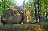 Koboldsteine, goblins' stones at Natural Park Blockheide Eibenstein, Gmuend, Lower Austria, Austria, Europe