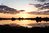 Sundown at the Ornumer Noor, branch of the Schlei, Schlei, Schleswig-Holstein, Germany, Europe