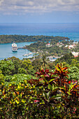 Lush tropical vegetation with cruise ship MS Deutschland (Reederei Peter Deilmann) in the background, in the harbour, Port Antonio, Portland, Jamaica, Caribbean