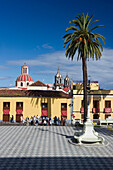 Square with palm tree at La Orotava, Tenerife, Canary Islands, Spain, Europe