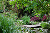 Pond with bamboo forest in the background at Andre Hellers' Garden, Giardino Botanico, Gardone Riviera, Lake Garda, Lombardy, Italy, Europe