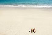 Couple sunbathing on white sandy beach. Couple sunbathing on white sandy beach