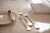 Close up of forks in place setting. Close up of forks in place setting