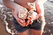 Woman holding seashells on beach. Woman holding seashells on beach