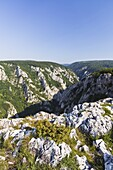The gorge of Zadiel in the slovak karst  The gorge was created by the collapsing of several caves  The National Park Slovak Karst is protecting the Karst region and the UNESCO world heritage of the caves of the Aggtelek and Slovak karst  Europe, East euro