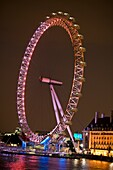 Night view of the london eye, London, England