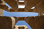 Huge Pillars showing hieroglyphics in the Great Hypostyle Hall n the Precinct of Amun Re, Karnak Temple, Luxor, Egypt  North Africa
