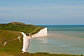 Birling Gap and Chalk cliffs of the Seven Sisters, South Dawns Way, Sussex, England, UK
