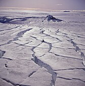 Crevices in Sidujokull Glacier, Iceland   Glacial surges, where a glacier begins to move much faster then its normal velocity, have caused the 1000 year old ice of Sidujokull glacier to crevice substantially