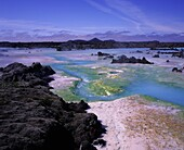 Algae, silica, minerals surrounded by lava rock  Geothermal area close by Blue Lagoon bathing hot springs, Reykjanes Peninsula, Iceland
