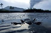 Tavurvur Volcano at daytime. Tavurvur Volcano, Rabaul, East New Britain, Papua New Guinea, Pacific