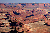 Green River Overlook with view to Green River, Island in the Sky, Canyonlands National Park, Moab, Utah, Southwest, USA, America