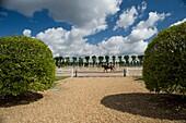 Sandpit training for horses face to military riding school, horse rider, Saumur, Maine et Loire, Pays de Loire, France