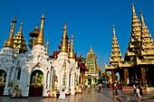 Myanmar (Burma), Yangon State, Yangon capital, Kandawgyi Quarter, People Park, Shwedagon pagoda, Buddhist in meditation
