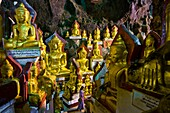 Myanmar (Burma), Shan State, Pindaya, Shwe Umin caves, these famous caves shelter 8000 Buddhas in teak, alabaster, marble, brick, gloss paint and cement arranged over the centuries (since the 13th) in the different rooms of the caves