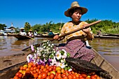 Myanmar (Burma), Shan State, Inle Lake, village of Ywama, Ma Khin Win Myint sells vegetables at the floating market