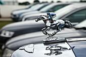 England,London,Annual Epsom Derby Horse Race,Race Horse Statue on Car Bonnet