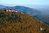 France, Bas-Rhin (67), the medieval castle (XI century) Upper Koenigsbourg, listed building, located on the town of Orschwiller, at 757 meters, (aerial view)