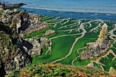France, Finistère (29), Bay of Douarnenez, the sandy coast to Plomodiern, beach covered with green algae (Ulva armoricana)
