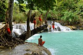 Asia, Southeast Asia, Laos, Monks jumping in the waters of Kuang Si Falls
